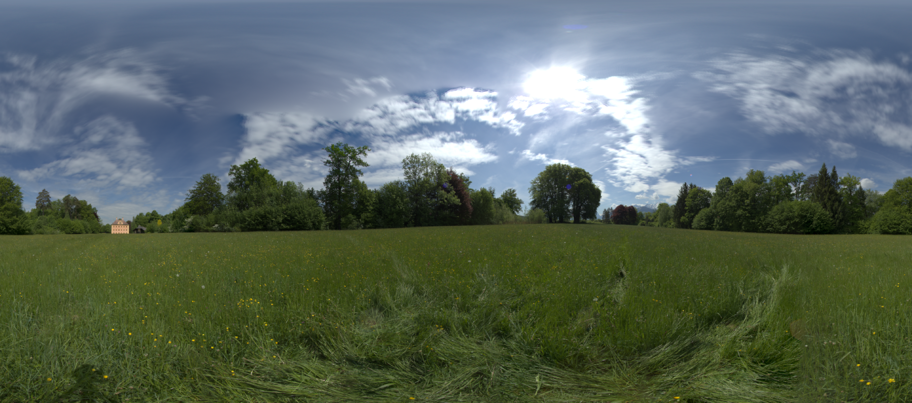 HDR_Wiese_v02.png